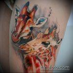 Уникальный пример готовой татуировки жираф – рисунок подойдет для тату жираф маленькийтату жираф моноцвет