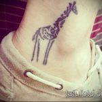 Уникальный вариант готовой наколки жираф – рисунок подойдет для тату жирафа на спине