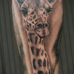 Оригинальный пример нанесенной татуировки жираф – рисунок подойдет для тату жираф в очках