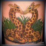 Прикольный вариант выполненной тату жираф – рисунок подойдет для тату жирафа на спине