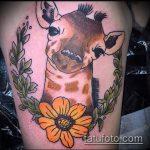 Крутой вариант выполненной татуировки жираф – рисунок подойдет для тату жираф на спине