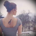 Интересный пример существующей наколки жираф – рисунок подойдет для тату жирафа на спине