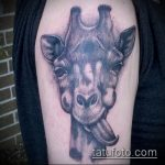 Крутой пример выполненной татуировки жираф – рисунок подойдет для тату жираф в очках
