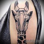 Оригинальный вариант существующей татуировки жираф – рисунок подойдет для тату жираф на акуле