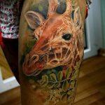 Зачетный пример существующей наколки жираф – рисунок подойдет для тату жирафа на спине