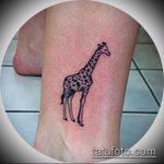 Интересный пример выполненной татуировки жираф – рисунок подойдет для тату жирафа на спине