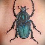 Классный вариант нанесенной татуировки жук – рисунок подойдет для тату жук ёжик