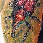 Классный пример выполненной тату жук – рисунок подойдет для тату жука на руке
