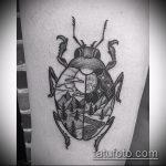Интересный вариант готовой татуировки жук – рисунок подойдет для тату жук на ноге