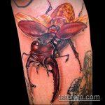 Классный пример нанесенной тату жук – рисунок подойдет для тату жук на плече