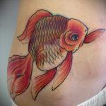 Крутой вариант выполненной тату золотая рыбка – рисунок подойдет для тату золотая рыбка в короне