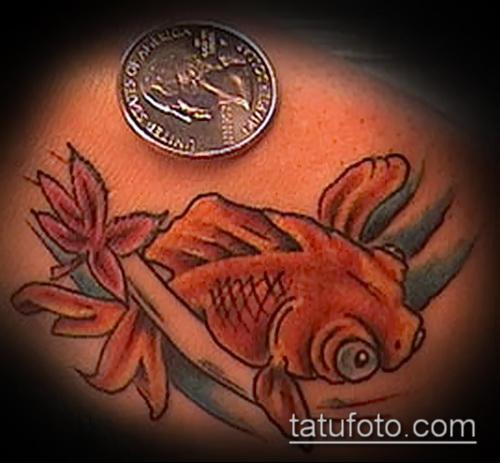 Классный пример нанесенной наколки золотая рыбка – рисунок подойдет для тату золотая рыбка и лотос