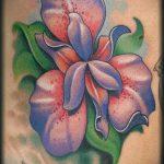 Оригинальный пример нанесенной тату ирис – рисунок подойдет для тату ирис акварель