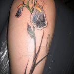Прикольный вариант нанесенной наколки ирис – рисунок подойдет для тату ирисы на руке
