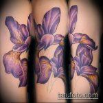 Прикольный пример существующей татуировки ирис – рисунок подойдет для тату ирис на спине