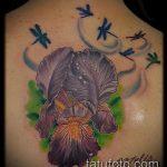 Оригинальный вариант готовой тату ирис – рисунок подойдет для тату ирис на спине