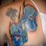 Интересный вариант нанесенной татуировки ирис – рисунок подойдет для тату цветка ирис