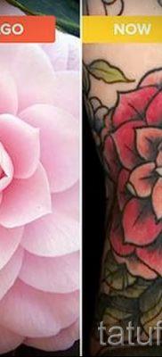 Достойный вариант татутатуировки камелия на фото для статьи про историю рисунка цветка камелии в тату