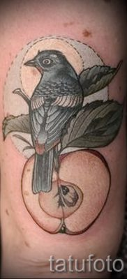 Интересный вариант идеи татуировки снегирь в готовой тату на фото – для материала про толкование тату снегирь