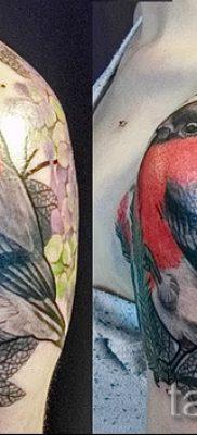 Оригинальный вариант идеи татуировки снегирь в готовой татуировке на фотографии – для материала про толкование тату снегирь