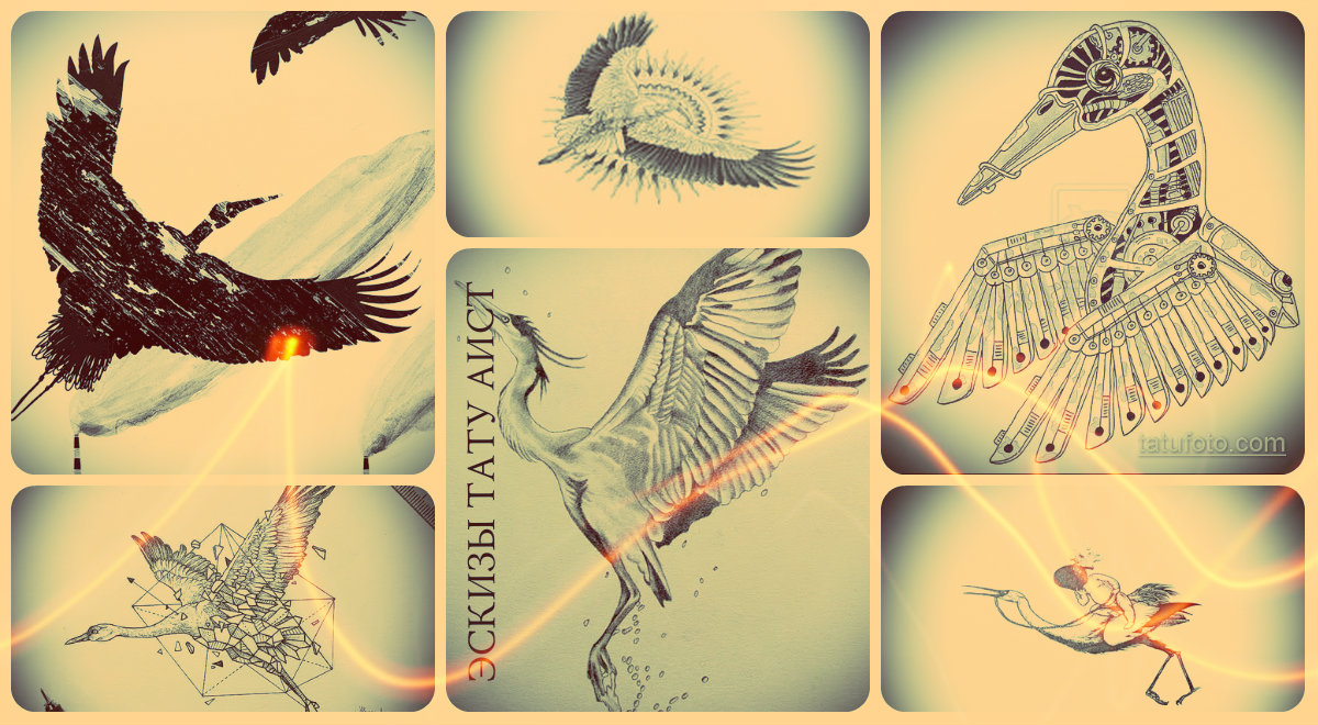 Эскизы тату аист - прикольные рисунки для создания идеи татуировки