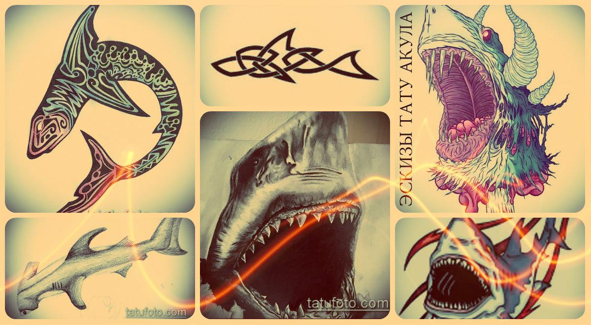 Эскизы тату акула - уникальные рисунки для создания идеи татуировки с акулой