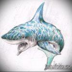 Оригинальный пример эскиза татуировки АКУЛА – рисунок подойдет для тату акула молот