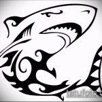 Классный вариант эскиза наколки АКУЛА – рисунок подойдет для тату акула якоремтату акулы груди