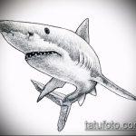 Зачетный пример эскиза наколки АКУЛА – рисунок подойдет для тату акула шее