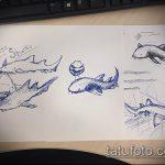 Классный вариант эскиза татуировки АКУЛА – рисунок подойдет для тату акула молот