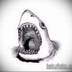 Прикольный пример эскиза татуировки АКУЛА – рисунок подойдет для тату акула спине