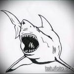 Прикольный пример эскиза тату АКУЛА – рисунок подойдет для тату акула якоремтату акулы груди