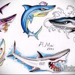 Интересный пример эскиза наколки АКУЛА – рисунок подойдет для тату акула олд скул