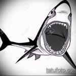 Крутой пример эскиза тату АКУЛА – рисунок подойдет для тату полинезия акула