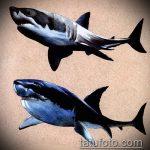 Интересный вариант эскиза тату АКУЛА – рисунок подойдет для трайбл тату акулы