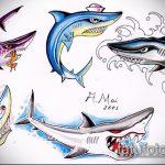Уникальный вариант эскиза наколки АКУЛА – рисунок подойдет для трайбл тату акулы