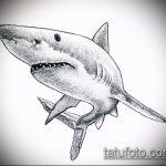 Крутой пример эскиза тату АКУЛА – рисунок подойдет для тату акула на руке