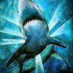Зачетный пример эскиза татуировки АКУЛА – рисунок подойдет для тату акулы ноге