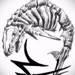 Зачетный пример эскиза тату АКУЛА – рисунок подойдет для тату акулы плече