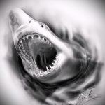 Прикольный вариант эскиза наколки АКУЛА – рисунок подойдет для тату акулы ноге
