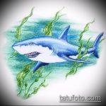 Прикольный пример эскиза тату АКУЛА – рисунок подойдет для тату полинезия акула