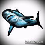 Оригинальный пример эскиза наколки АКУЛА – рисунок подойдет для тату акула олд скул