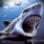 Прикольный вариант эскиза татуировки АКУЛА – рисунок подойдет для тату акулы плече