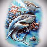 Прикольный вариант эскиза тату АКУЛА – рисунок подойдет для трайбл тату акулы