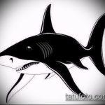 Классный пример эскиза татуировки АКУЛА – рисунок подойдет для тату акула олд скул