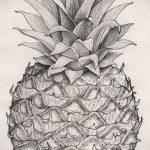 Оригинальный вариант эскиза наколки АНАНАС – рисунок подойдет для тату ананас на пальце