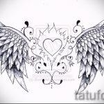 Необычный эскиз тату крылья – рисунок наколки крыло подойдет для тату сердце с крыльями
