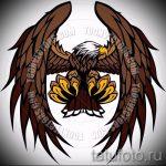 Классный эскиз татуировки крылья – рисунок наколки крыло подойдет для тату под крылом