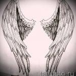 Необычный эскиз тату крылья – рисунок наколки крыло подойдет для крыло ангела демона тату