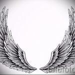 Необычный эскиз тату крылья – рисунок наколки крыло подойдет для тату крылья дьявола